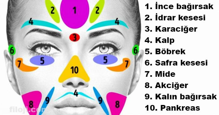 Yüzünüzde meydana gelen bu 11 cilt problemi size diğer organlarınızla ilgili sinyaller veriyor