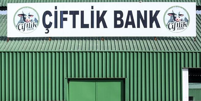 'Çiftlik Bank' soruşturmasında bir kişi daha tutuklandı