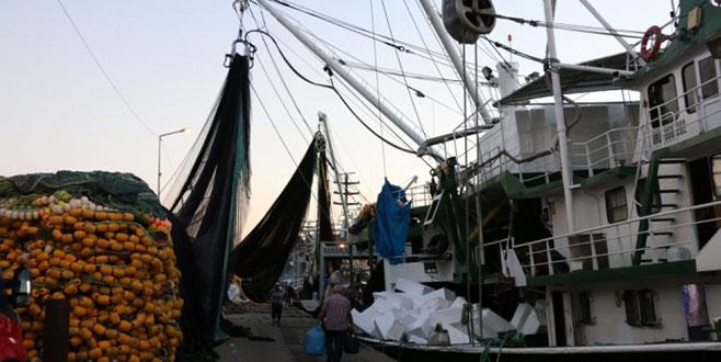 Balıkçıların tesellisi kalkan oldu