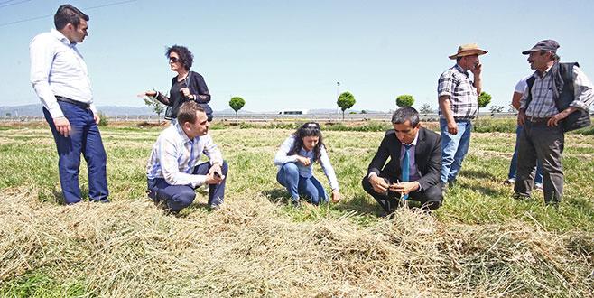 Yenişehir'de mera alanları genişleyecek
