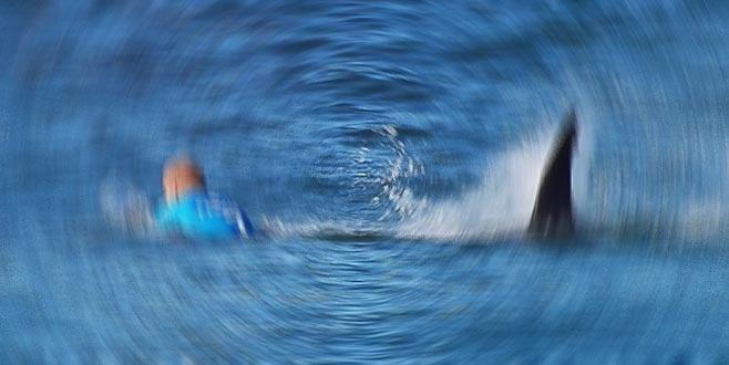 Sörf yaparken köpek balığı saldırısına uğradı