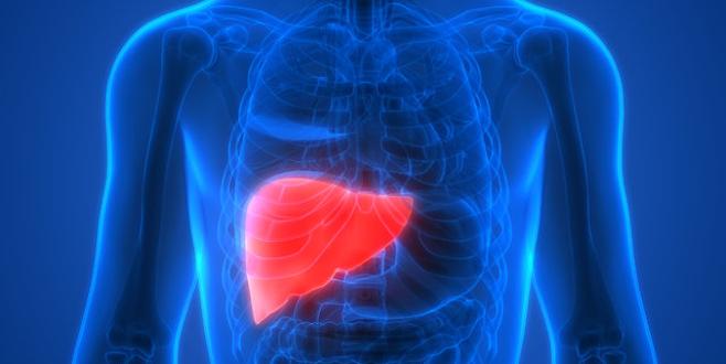 Karaciğeri yenileyen 5 besin!