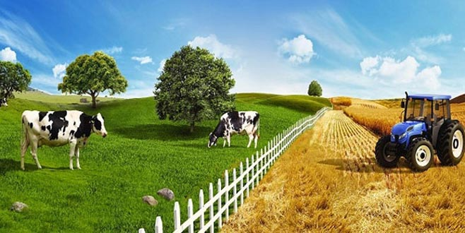 Tarım Kredi'den 100 üründe yüzde 10 indirim