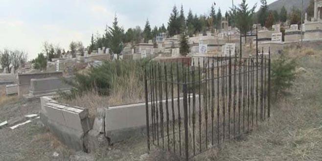 Annesinin mezarı başında bir köpek gördü! Yaklaşıp baktı şoka girdi…