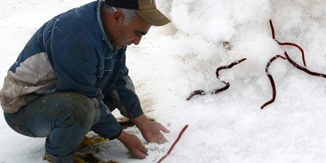 Kar yağınca yerin altından çıktılar! 'İlk defa böyle bir şeyle karşılaştık'