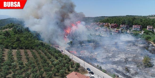 Bursa'nın yanan ciğerlerine ilk fidan Bakan'dan