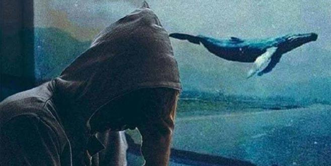 Mavi Balina: Tehlikeli oyunun altında yatan gerçekler