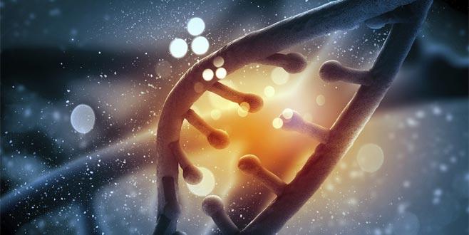'Aşırı alkol almak DNA'yı bozuyor'