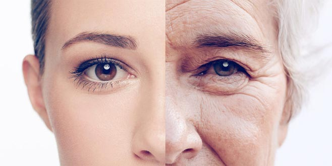 Bilim insanlarından yaşlanmayı yavaşlatacak protein keşfi