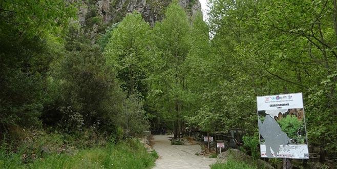 Sadağı Kanyonu gezenleri büyülüyor