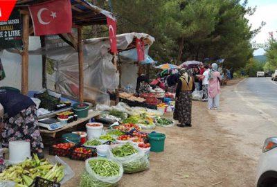 Yol kenarında satıyorlar! Hem organik hem ucuz…