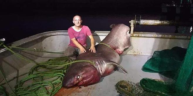 Çanakkale'de yakalandı! Tam bir ton ağırlığında…