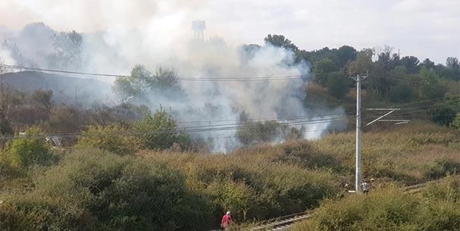 Nükleer Araştırma Merkezi'ndeki ağaçlık alandan yangın