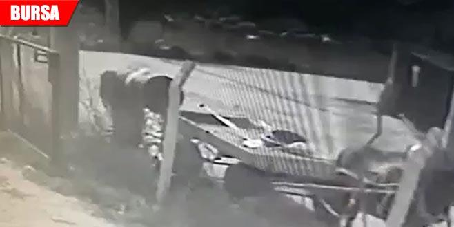 At arabalı hırsızlar güvenlik kameralarında