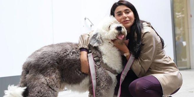 Ebru Şancı: Bir köpeğimin fön ve yıkama bedeli 150 TL