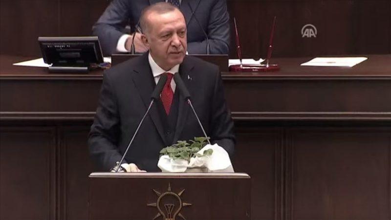 Erdoğan: Suriye, Libya, Akdeniz'de macera peşinde değiliz