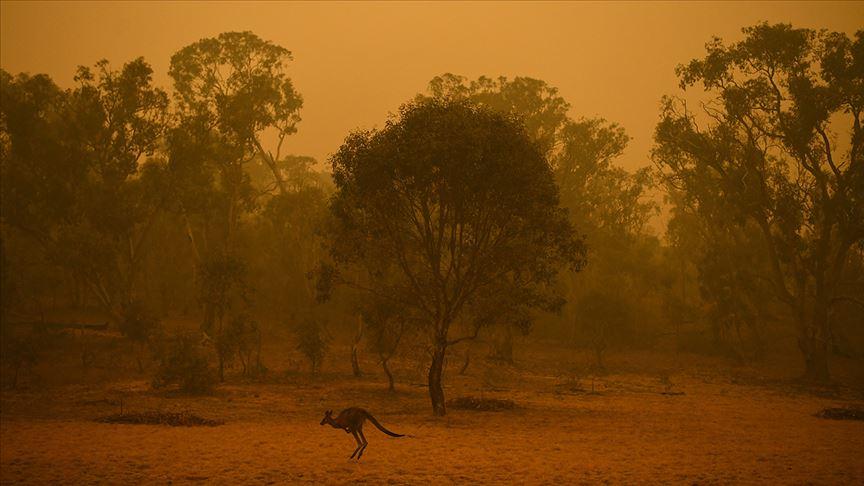 Yangın, toz fırtınası, dolu ve sel vurmuştu! Avustralya için flaş uyarı