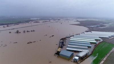 Binlerce dönüm arazi sular altında kaldı