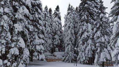 Uludağ'da kar kalınlığı 160 santimetre