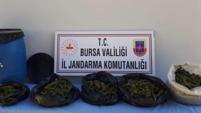 Bursa'da şok baskın! Toprağa gömülmüş halde bulundu…