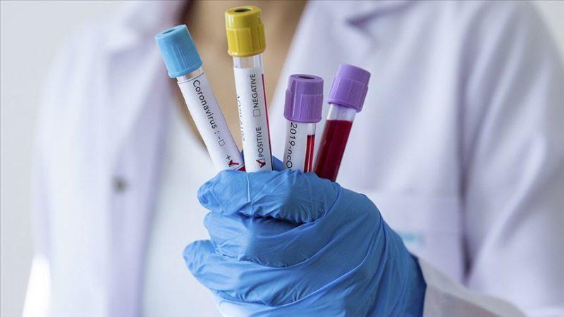 İran'da koronavirüsten ölenlerin sayısı arttı