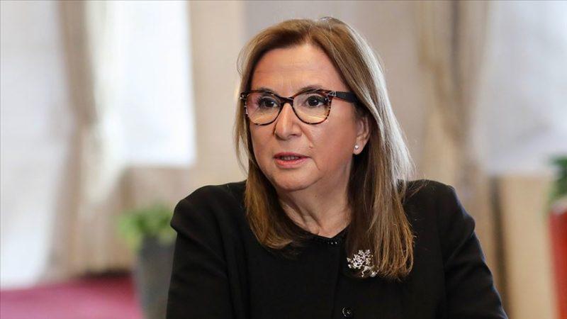 Ticaret Bakanı: Sarp, Türkgözü ve Aktaş sınır kapılarının kapasiteleri artırıldı