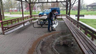 İnegöl Belediyesi sokak hayvanlarını yalnız bırakmıyor