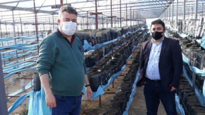 Çiftçiye destek sürüyor