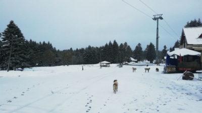 Uludağ'da nisan ayında kar sürprizi