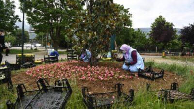 Osmangazi Belediyesi'nden 200 bin çiçek…