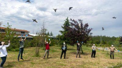 Bursa'da tedavi edilen 2 çakal ve 7 şahin doğaya bırakıldı