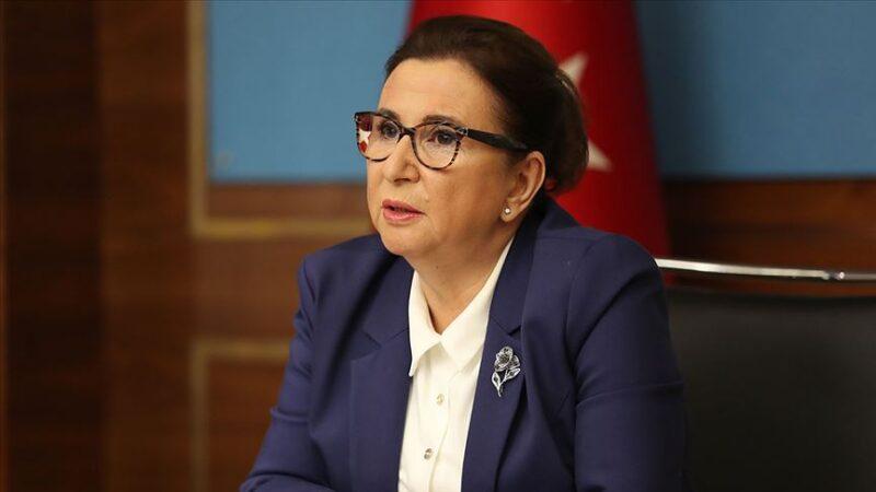 Ticaret Bakanı Pekcan, Finlandiya Dış Ticaret Bakanı ile görüştü