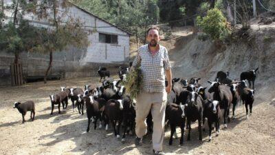 Yer: Bursa… Bu koyunu almak isteyenler 5 ay sıra bekliyor