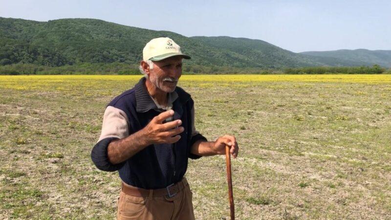 Bursalı çobanın kendine has üslubuyla anlattığı video, sosyal medyayı salladı!