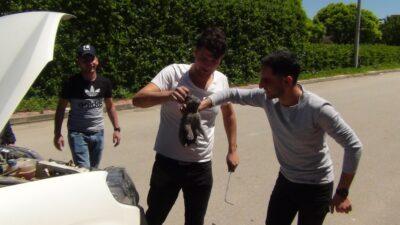 Bursa'da gençlerin saatler süren kedi kurtarma operasyonu