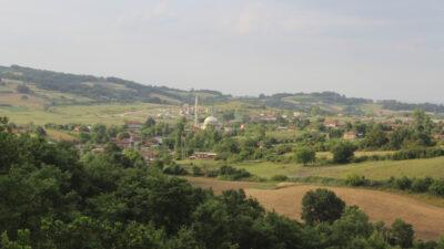 Bursa'nın 4 köyünde kurt kâbusu!