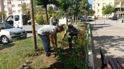 Parklara 'normalleşme' bakımı