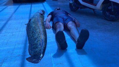 Bursa'da insan boyunda balık yakalandı