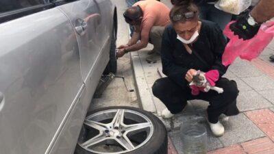 Otomobile sıkışan kedi aracın lastiği sökülerek çıkartıldı