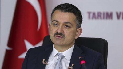 Bakan'dan Bursa'daki orman yangınıyla ilgili yeni açıklama