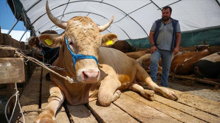 Kurban etiyle ilgili korkutan açıklama!