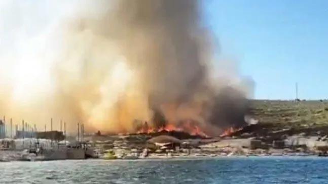 İzmir'de Alaçatı'da orman yangını!