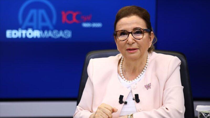 Bakan Pekcan, Zynga'nın Türk oyun şirketi Rollic'i satın almasını değerlendirdi