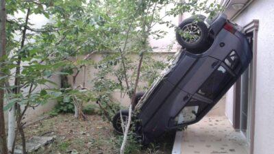 Bahçeye çıkınca hayatının şokunu yaşadı!