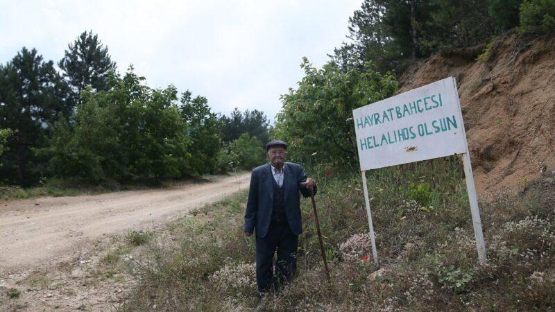 Bursa'da bu sebze ve meyveler 23 yıldır ücretsiz