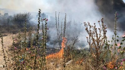 Bursa'da anız yangınları tehlike saçıyor