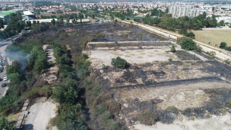 Bursa'da arazi yangını kontrol altına alındı