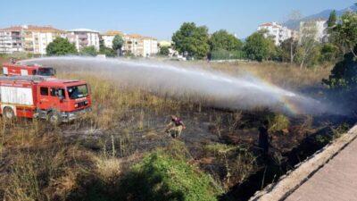 Sigara izmariti yangın çıkardı, Paşa Çiftliği tehlike atlattı