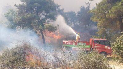 Çanakkale'deki orman yangını yaşanan Yalova köyü tahliye ediliyor