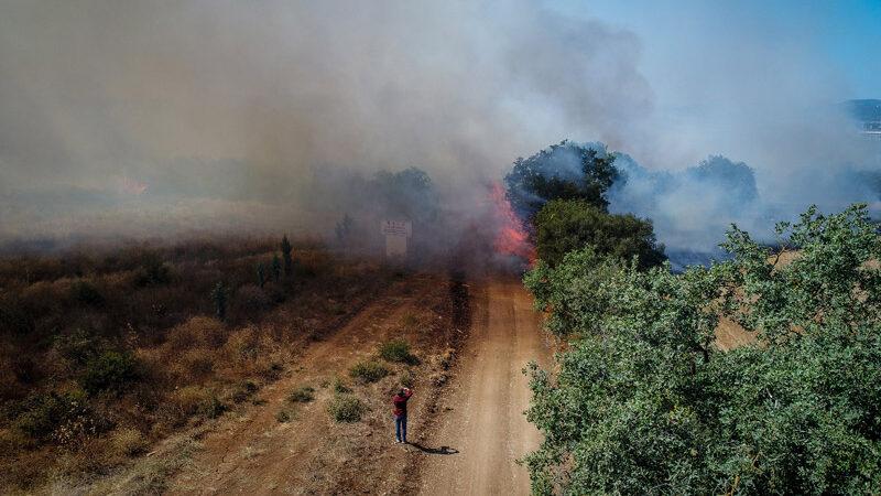 Bursa dahil 5 ilde orman yangını! Bakan'dan açıklama